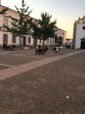 Praça Sertorio